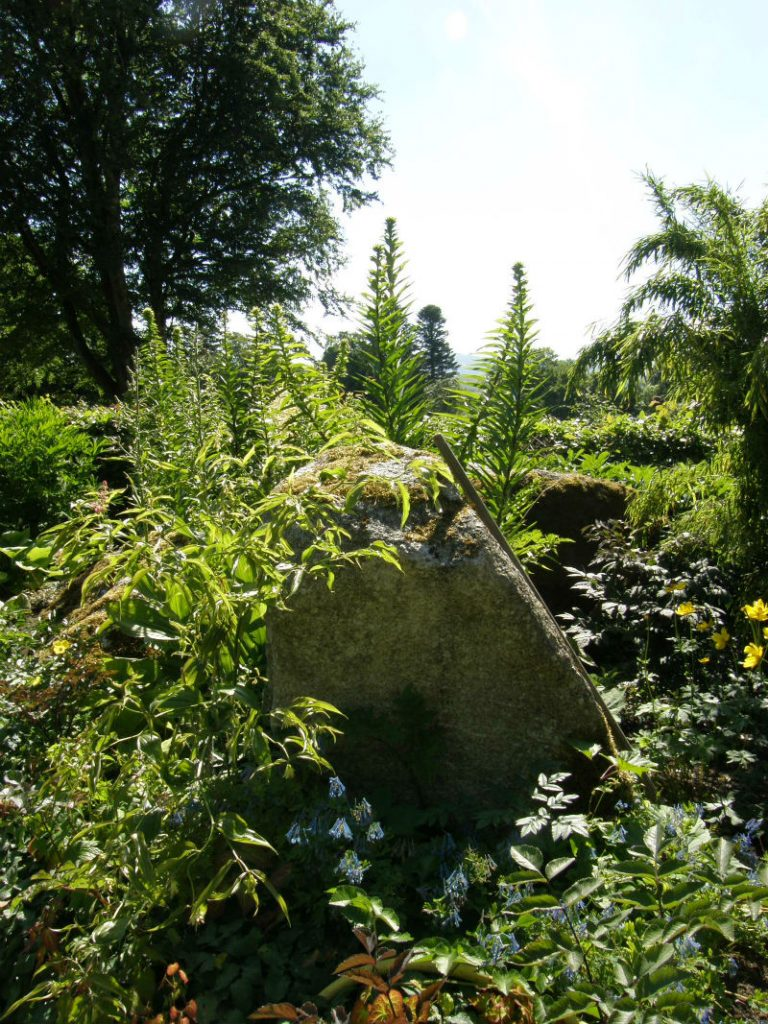 June Blake's Garden shadier planting